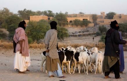 Hirten in Timbuktu